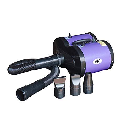 H.JPT Pet Dryer Dog 2600w Dual Motor Heating Water Blowing Machine Hair Low Noise for Two Groups Speed Adjustable High Power (Color : D) -