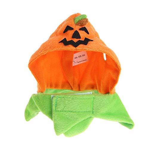 Ogquaton Haustier Kopfbedeckung Halloween Kürbis Hut Katze Welpen Kostüm Cosplay Produkte langlebig und praktisch
