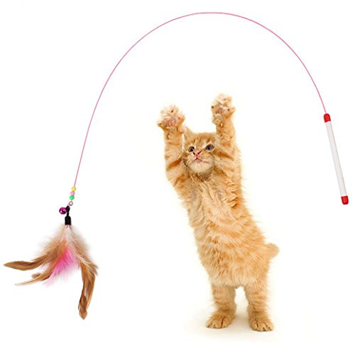 Monbedos-gattino-gatto-giocattolo-Pet-Supplies-Cat-Teaser-Wand-stick-InterActive-Toy-Pet-piuma-Play-Toy-concorrenza-formazione