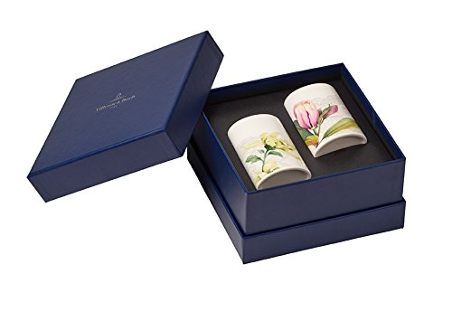 villeroy-boch-quinsai-garden-salt-and-pepper-set-porcelain-multi-colour-2-piece