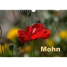 Mohn (Wandkalender 2018 DIN A4 quer): Mohnblüte, die flüchtige Gartenschönheit. (Monatskalender, 14 Seiten ) (CALVENDO Natur)