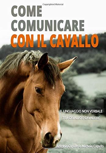 Come Comunicare Con Il Cavallo Il Linguaggio Non Verbale Tra Cavallo E Cavaliere