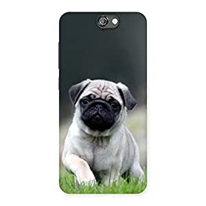 Radiant Cuty Pug Dog Back Case Cover for HTC One A9