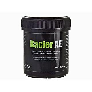 GlasGarten Bacter AE Inhalt 70 g