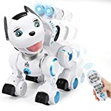 SGILE RC Wireless Dog Robot - Cute Touch Sensing Puppy with Blink, Sing
