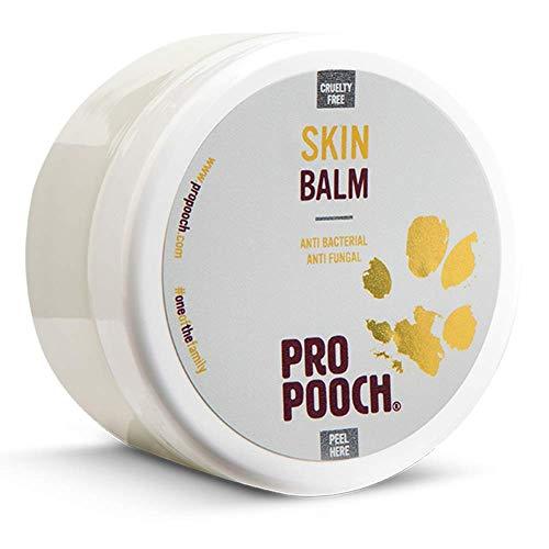 Pro Pooch Perros Bálsamo para Piel con picor (100 ML) | Tratamiento para Perros con Problemas de Piel como Dermatitis, Eczema y Piel Seca