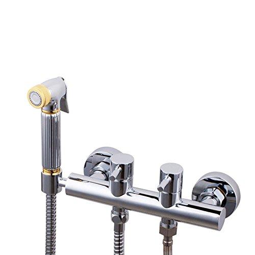 GFEI deux en deux du robinet d'eau chaude et d'eau froide le dispositif de nettoyage et multifonctionnelle de baignade et les buses / pet chasse d'eau,2m de tuyau
