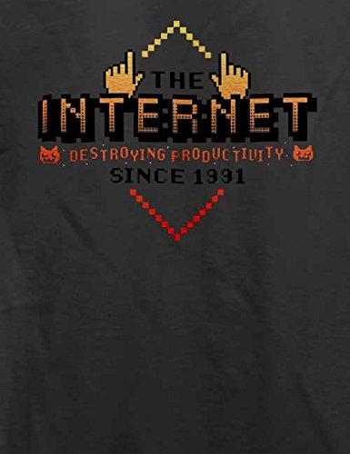 Internet Destroying Productivity T-Shirt Grau