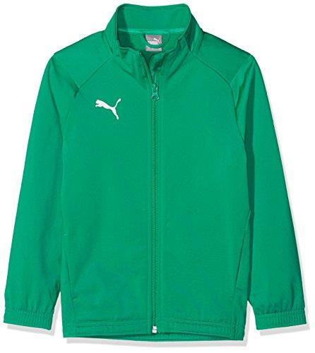 PUMA Jungen Liga Sideline Poly Jacket Core Jr Jacke, Pepper Green White, 152