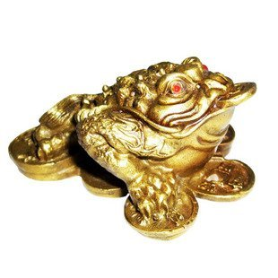 Feng Shui Import Feng Shui Money Frog /Money Toad Attract Wealth