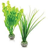 Reef One Biorb Easy Plant Green Short 2pack