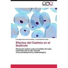 Efectos del Cadmio en el testículo