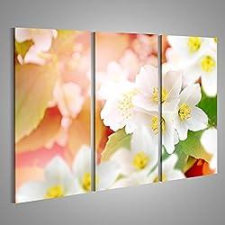 Cuadro Cuadros paisaje de primavera con delicadas flores de jazmín flores blancas Impresión sobre lienzo - Formato Grande - Cuadros modernos