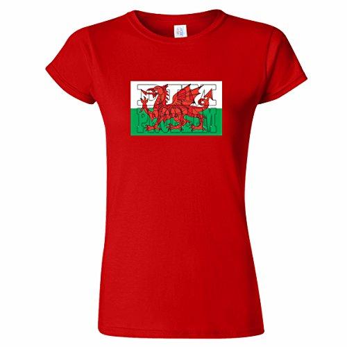 Pinchos Dim Problem Welsh Flag Design Womens T Shirt
