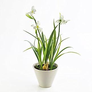 artplants.de Set 2 x Campanilla con Cebolla, en Maceta, Blanco, 30cm – 2 Unidades de Planta Artificial – Flores Decorativas