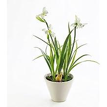 Künstliches Schneeglöckchen mit Zwiebel, getopft, weiß, 30 cm - Textilblumen / Kunstblumen - artplants