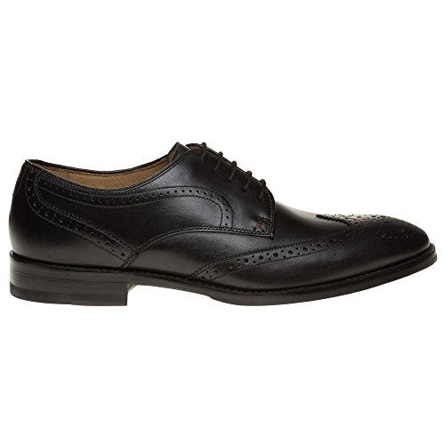 Aquascutum Brogue Homme Chaussures Noir Noir