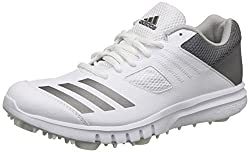 Adidas Mens Howzat Spike Ftwwht, Ngtmet, Gretwo Cricket Shoes-10 UK/India (44 2/3 EU)(CM7423)