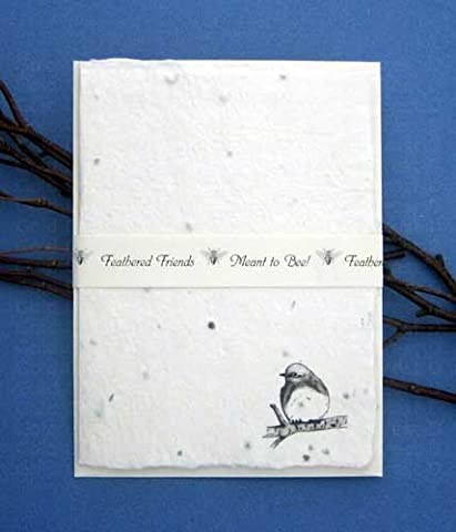 Individual Note Cards Bluebird