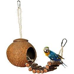 Nido de Pajaros Hecho de Cáscara de Coco con Escalera Casa Nido para Loro Agapornis Canario Hámster para Esconderse Natural Nido de Cría de Pajaros Artículos de Incubación Bird Parrot Nest u Accesorios de Decoración