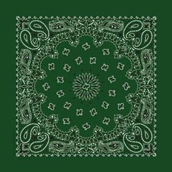 bulk-buy-carolina-have-a-hank-paisley-bandannas-22x22-hunter-green-ipaisley-27-6-pack