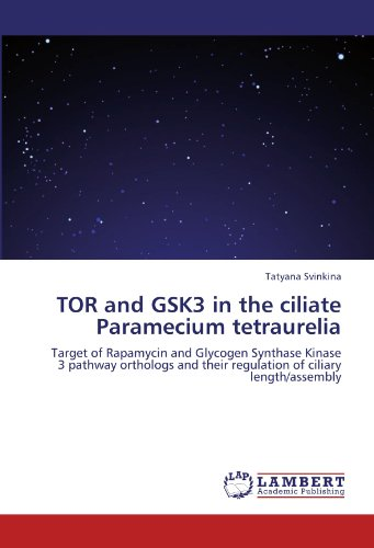 TOR and GSK3 in the ciliate Paramecium tetraurelia: Target of Rapamycin and Glycogen Synthase Kinase 3 pathway orthologs and their regulation of ciliary length/assembly