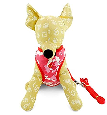 Ranphy Small Pet Cat Soft Mesh Dog Vest Harness Leash