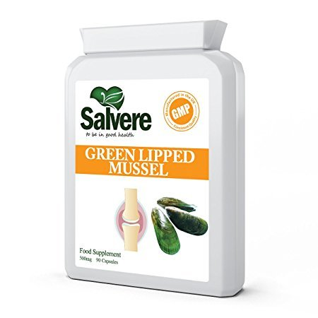 Green Lipped Mussel Extract 500mg, an Excellent Source of Selenium, Vitamin B12, Zinc, Folic Acid & Contains Omega 3 Fatty Acids for Healthy Brain Function & Immune System, High Levels of Glycoproteins Helps to Reduce Inflammation for Arthritis & Severe Joint