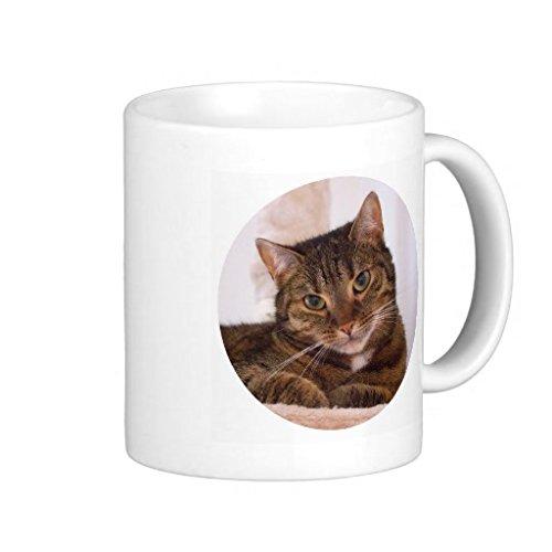 Funny Design nouveauté bureau café thé cadeau tasse motif chat tigré Marron Happy se reposer Cate Tasse à café