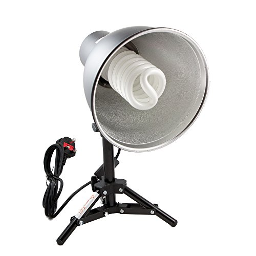 PhotoSEL LS12E41T Tisch-Studio-Beleuchtungsset, 1 x 55 W, 3000 lm, 5500 K, 90+ CRI