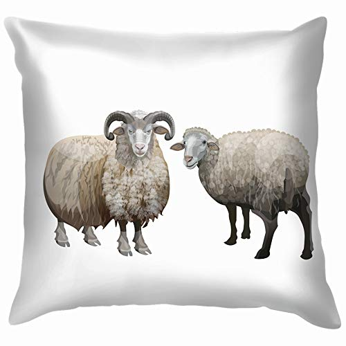 Domestic Sheep Ram Isolated Animals Wildlife Adult Nature Pillow Case Throw Pillow Cover Square Cushion Cover 18X18 Inch -