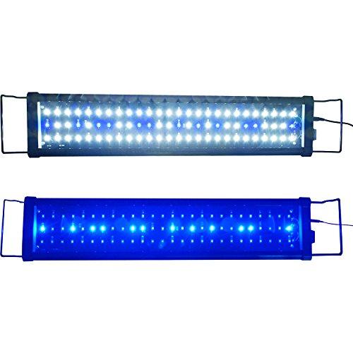 Aquarien Eco LED Aquarium Beleuchtung Aufsetzleuchte Blau Weiß Aquariumleuchte Lampe (60cm 15W)A046 (Fisch Aquarium Lampe)