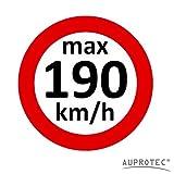 Geschwindigkeitsaufkleber Winterreifen Aufkleber 160 - 240 km/h Auswahl: (5 Stück, 190 km/h)