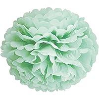 SUNBEAUTY 10 pezzi pom pom fiore di carta 25cm per la decorazione di nozze e decorazione della casa Pacchetto (menta)