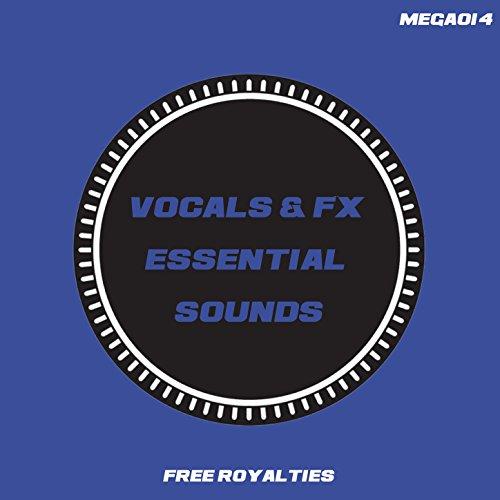 Vocals & FX Essential Sounds 128 (Tool 5)