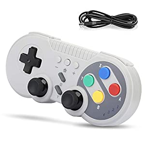 Wireless Controller für Nintendo Switch, Welltop Pro Controller für Nintendo Switch Wireless Gamepad Joystick mit Wiederaufladbarer Akku Unterstützt Gyro-Funktion, Double Vibration