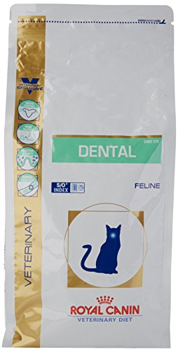 Royal Canin Cat Food Veterinary Dental DS0 29 1