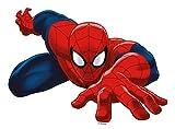 Tortenaufleger Spider-Man aus oblate L23,2xH17,3 cm