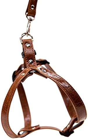 Bluemax Bluemax Genuine Leather Vintage Step-In Dog Harness, Medium, Tan