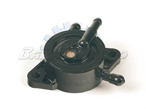 Pumpe Benzin-Motoren Briggs & Stratton, Honda, Kawasaki, Stier
