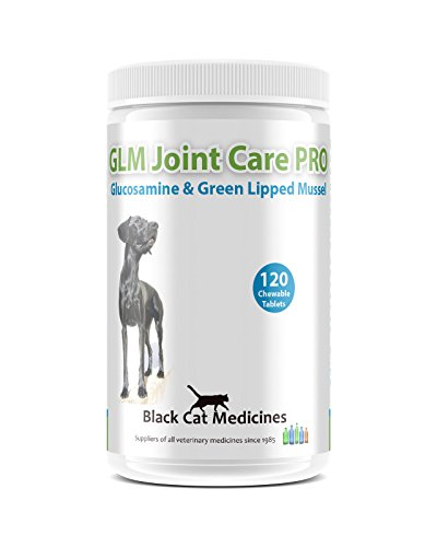 GLM Joint Care PRO for Dogs - 120 Chewable Tablets (Glucosamine and Green Lipped Mussel) 1