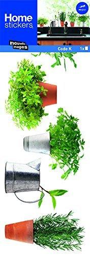 Stickers Fenêtres Herbes aromatiques 1 Nouvelles Images
