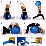 Sevia Exercise Ball Professional Grade Anti Burst Exercise Equipment For Home, Balance, Gym, Core Strength, Yoga, Fitness With Pump (Multi Color)