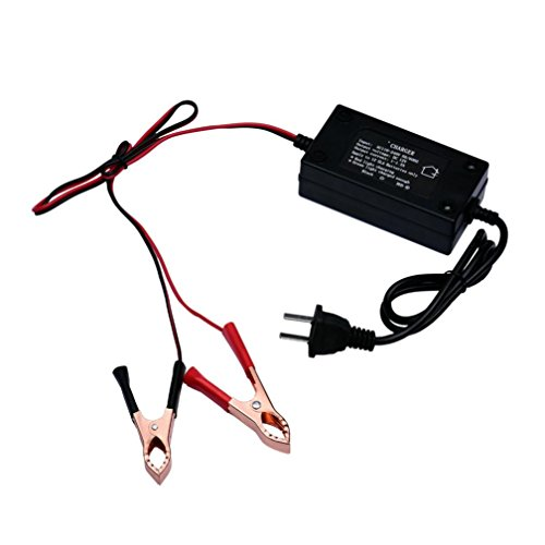 HARRYSTORE 12 Volt Automatik Auto Batterie Schwimmer Ladegerät Auto Direct AC Charge Wiederaufladbare Router