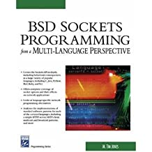 BDS Sockets Programming from a Multi-Language Perspective