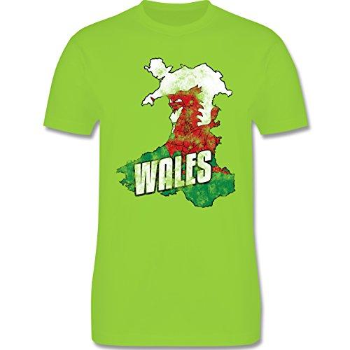 EM 2016 - Frankreich - Wales Umriss Vintage - Herren Premium T-Shirt Hellgrün