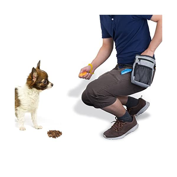 ZeWoo Dog Treat Training Pouch Bag -Collapsible Travel Food Water Dog Bowl - Free Doggie Clicker + Garbage Bag 6