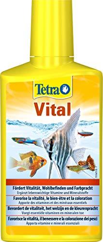 Zoom IMG-2 tetra vital vitamine e minerali