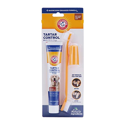 Arm & Hammer Paste & Brush Set