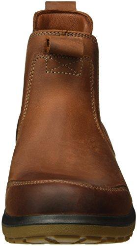 Ecco Herren Whistler Chelsea Boots Braun (COGNAC2053)